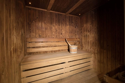 The Regency Park Hotel Sauna